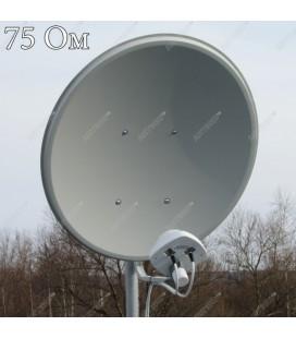 AX-2000 OFFSET 75 MIMO 2x2